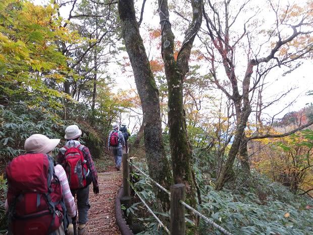 紅葉の脊振山~蛤岳を歩く - 行...