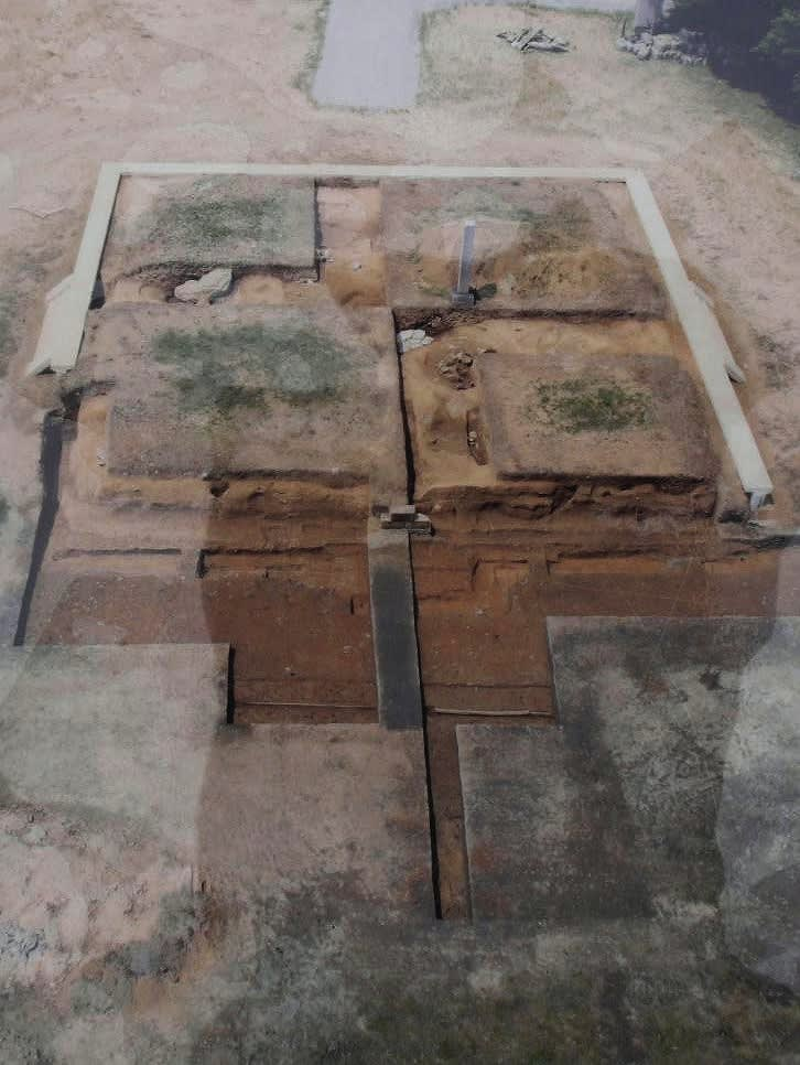 大安寺発掘時東塔跡