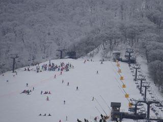 スキー場。賑わってます。バッジテストかな?