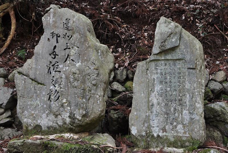 才谷の一本杉石碑