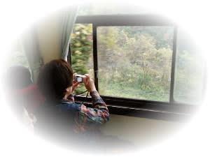 車内から撮影のfuu様と渓谷風景