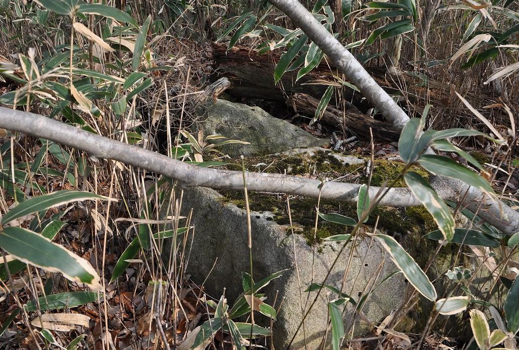 ウシガシバ2号墳露出石材
