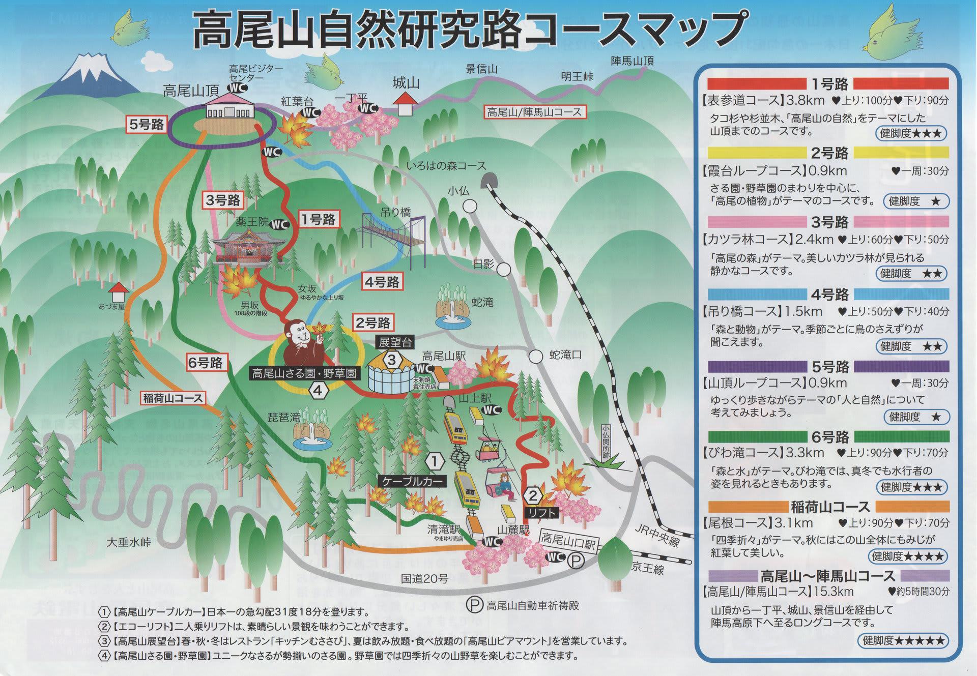 高尾山ビギナー&超初心者ハイカ...