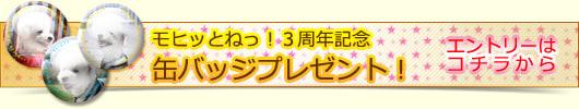 【 モヒッとねっ! 】3周年記念プレゼント
