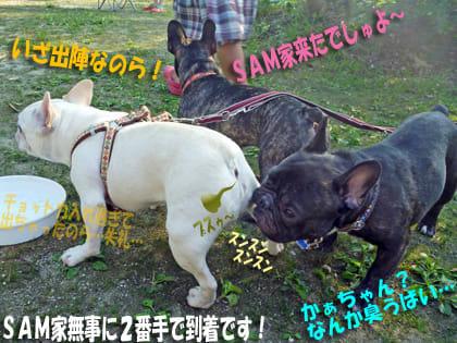 静岡県 白糸オートキャンプ場 の写真g17580