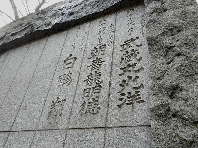 武蔵丸光洋の画像 p1_32