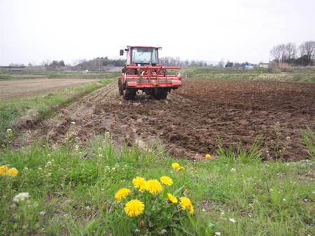 2012年のお米作りがスタートしました☆ 今日は朝から、田おこしをしてい...  mosyoのレ