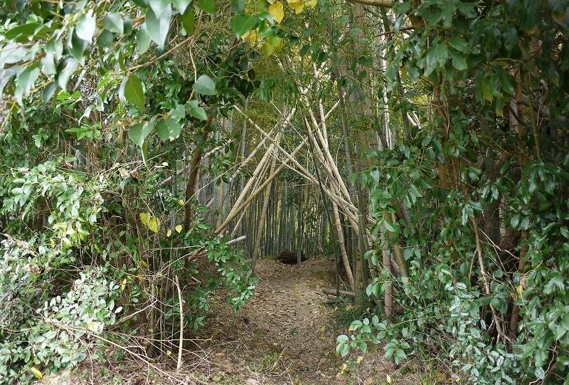 歌姫赤井谷横穴墓群進入口
