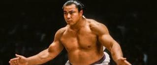 91年夏場所に若手力士の貴花田(後の横綱貴乃花)に敗れ、 「体力の限界」との言葉を残して現役引退を表明された時は、