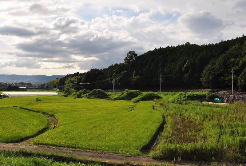 2012.09.09の円照寺五つ塚