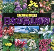 日本の高山植物