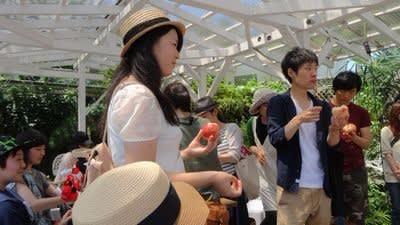 2017H29年桃狩り山梨御坂の人気直売所で食べ放題お土産やお取り寄せにおすすめの観光園