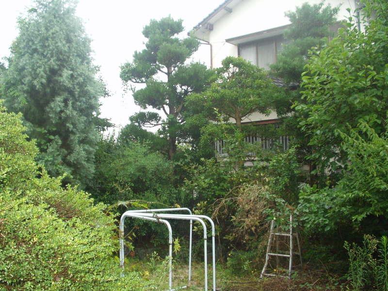 庭の維持管理 外観写真3