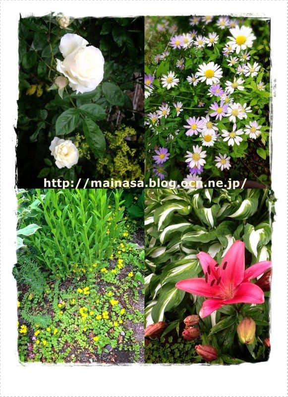 Mainasa_garden_2