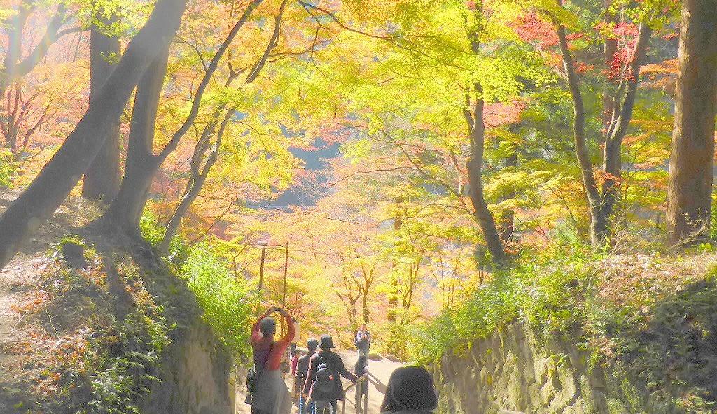 愛知県奥三河・・・足助の香嵐渓の紅葉を・・・物見遊山 - 比企の丘 ブログ ログイン ランダム