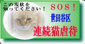 世田谷区連続猫虐待事件