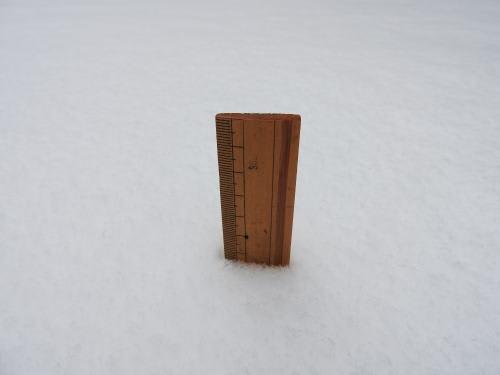 降雪2017/1/9 積雪24cm