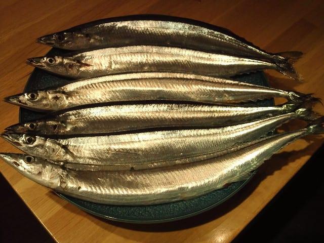 北海道産・秋刀魚