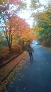 千が滝の紅葉