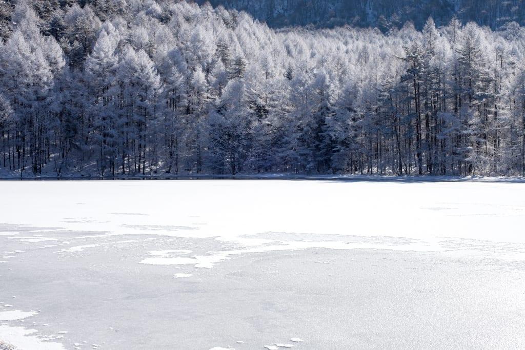 御射鹿池の霧氷