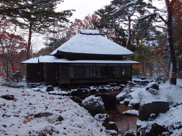 11月9日園内風景(3)