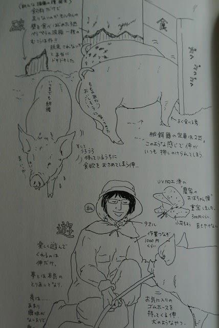 内澤旬子の画像 p1_24