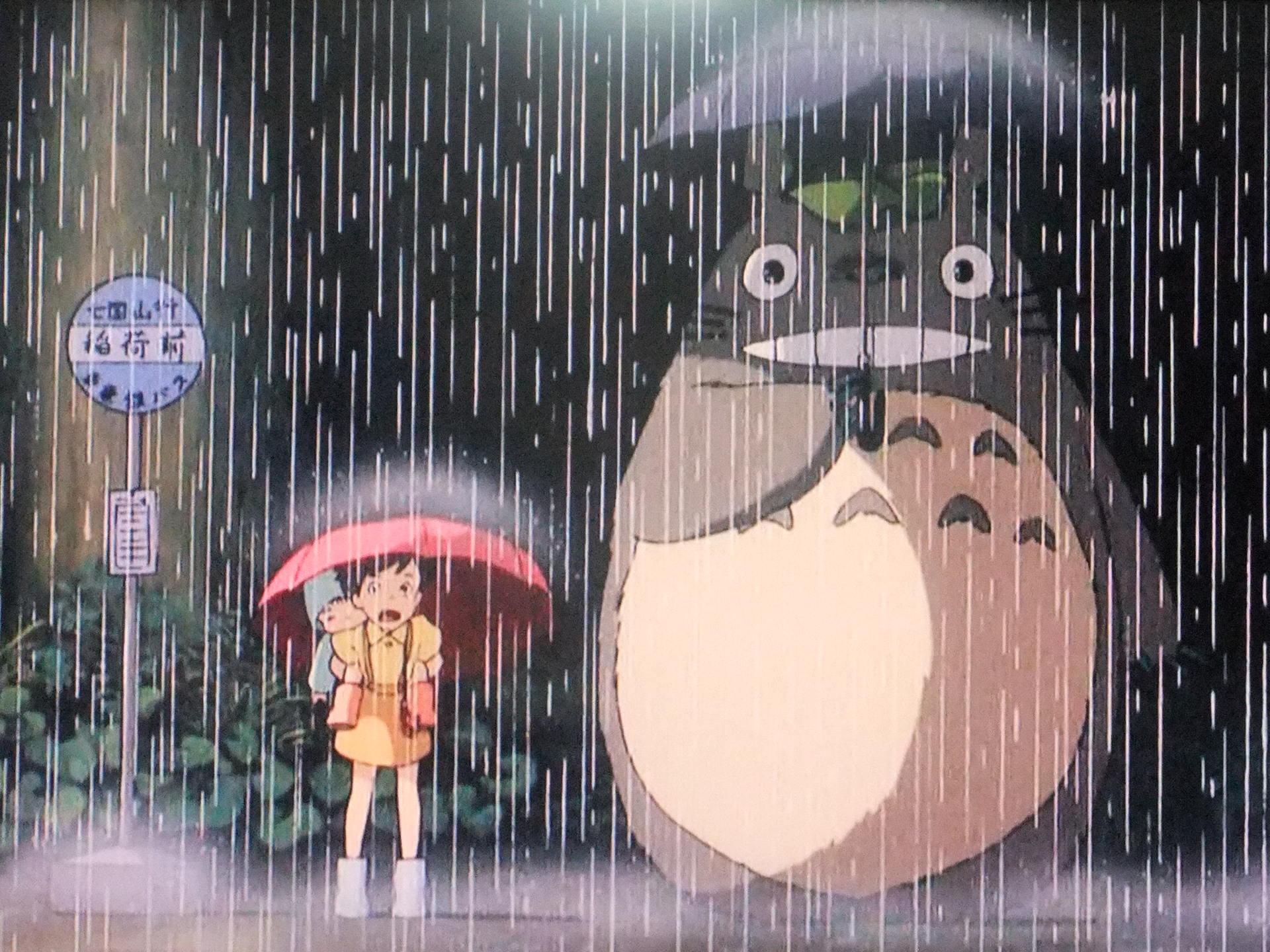 雨トトロとさつき
