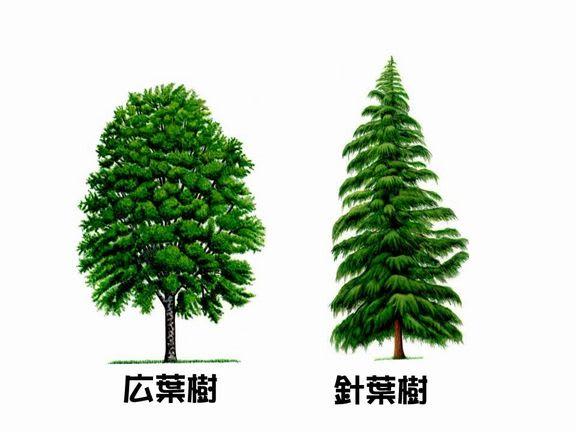 http://blogimg.goo.ne.jp/user_image/2f/ed/b1debb7d6e372bf6e5c298737583346f.jpg