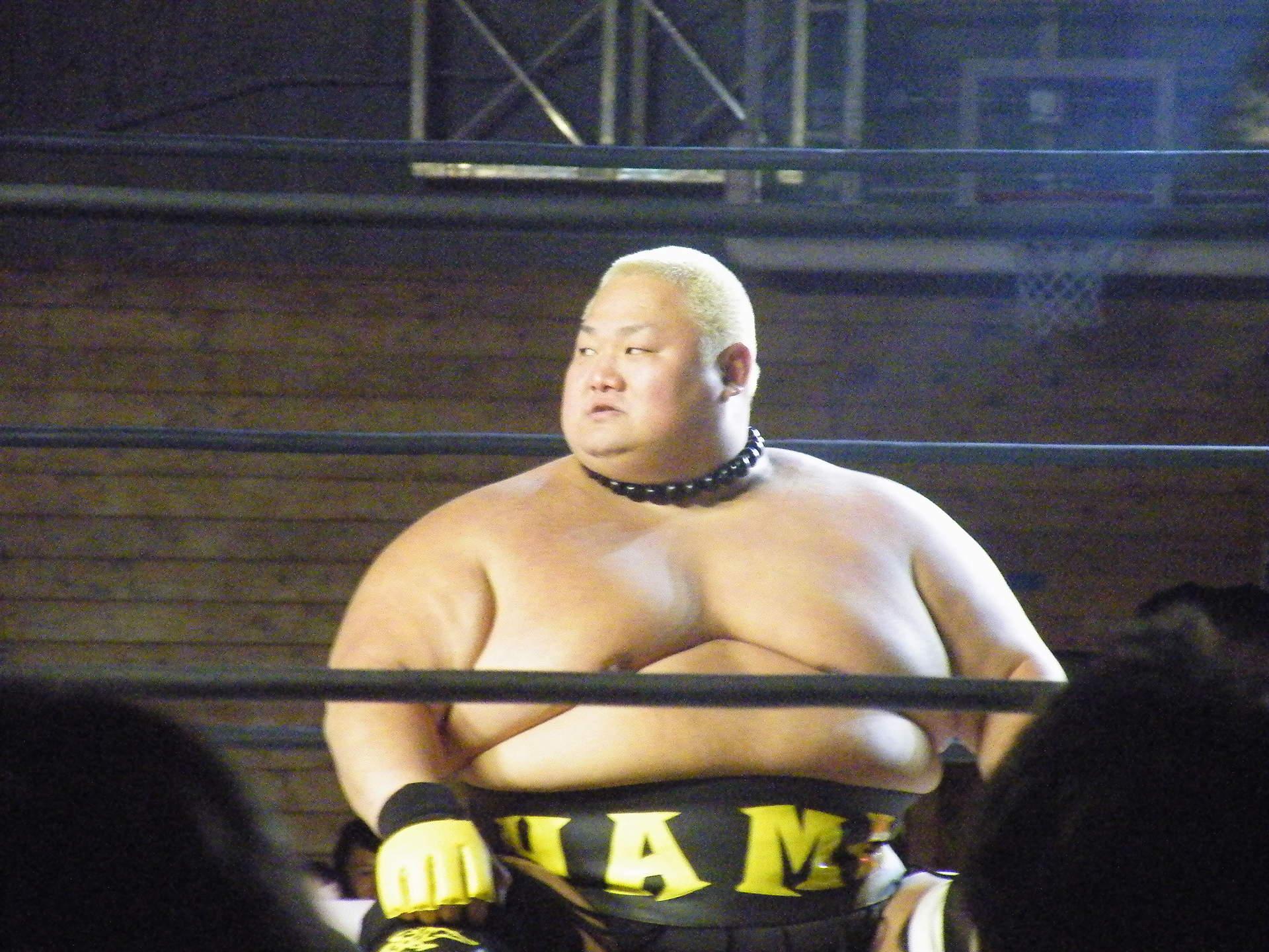 大相撲出身のプロレスラー一覧