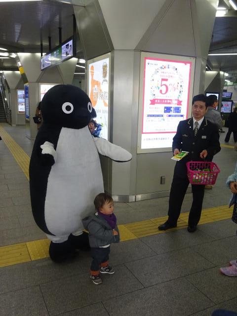 ペンギン (Suicaキャラクター)の画像 p1_34