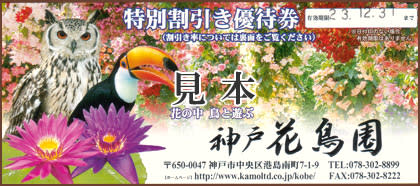 神戸花鳥園 割引優待券