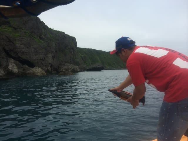 海神祭~爬竜舟レース~ - ゆうむつ船長の航海日記 ブログ ログイン ランダム gooアンバサダ