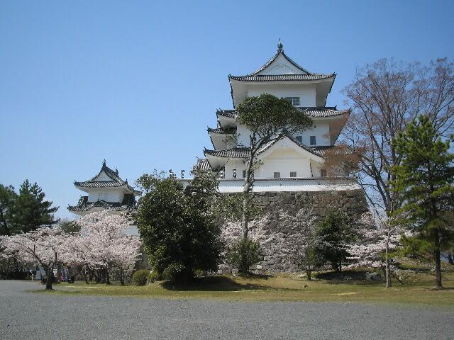先日 妻から依頼の固定資産税を納入済ませ その足で伊賀上野城に登城してみ...  獏の伊賀生活