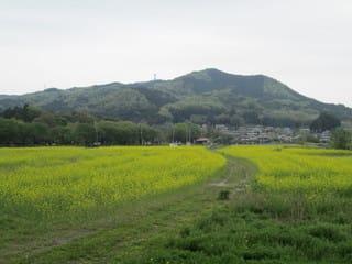 http://blogimg.goo.ne.jp/user_image/31/eb/45fee8c68eeb92e1500b3acea6644992.jpg