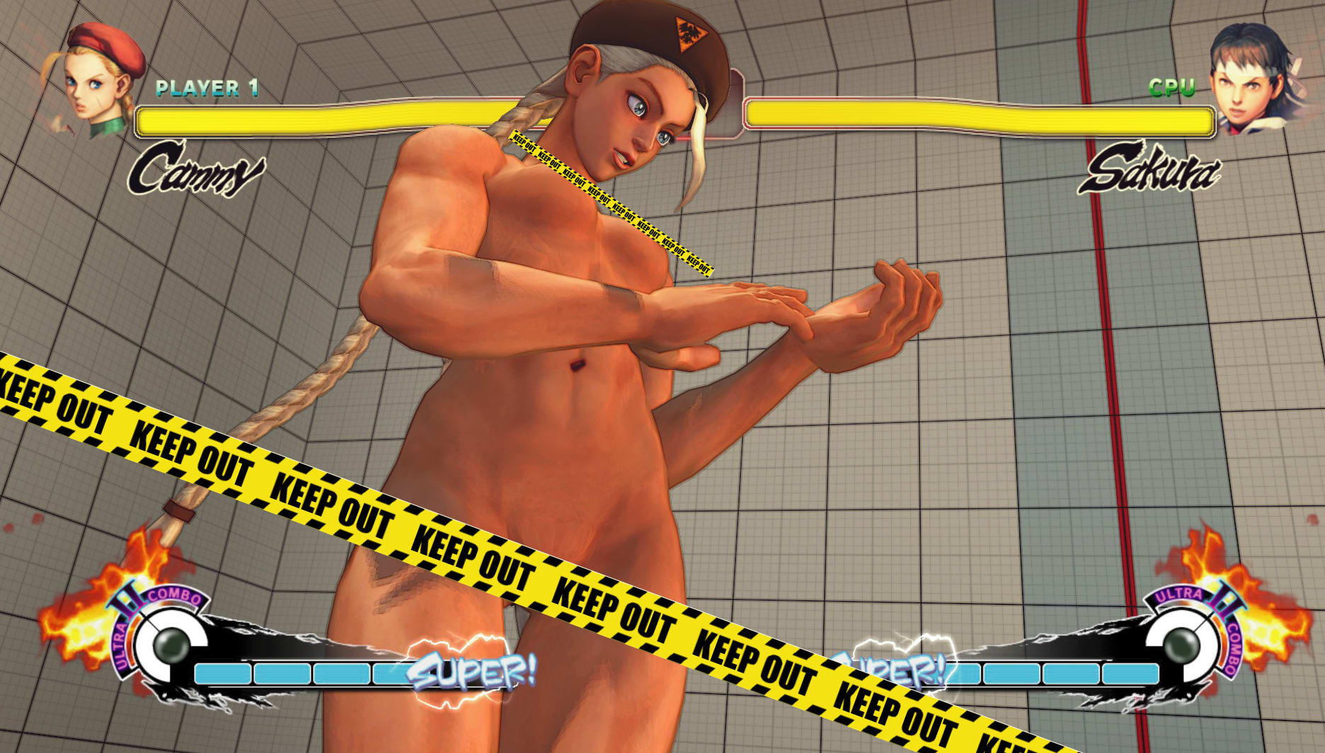 Super street fighter 4 nude mod nudes movie