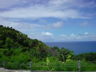 7月30日の母島