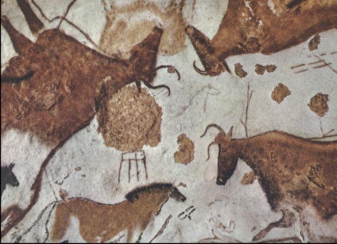 アルタミラ洞窟の画像 p1_28
