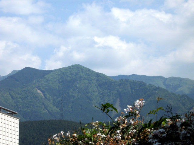 青い山脈 (映画)の画像 p1_25