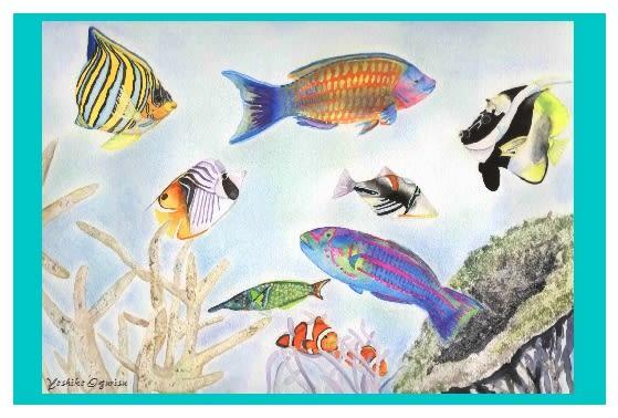 すべての講義 お魚の絵 : 月にグアム島に行きました