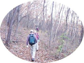 木の葉の絨毯を踏みしめて歩きます