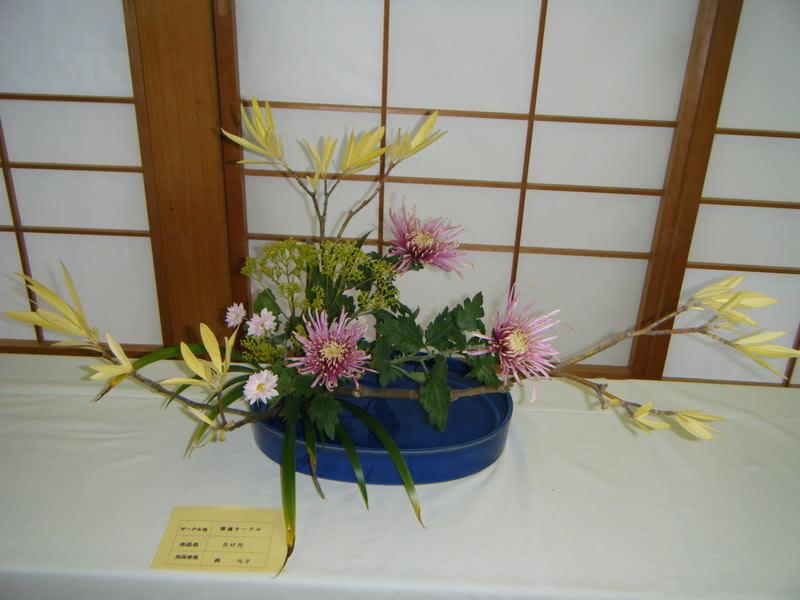 2008_11260040