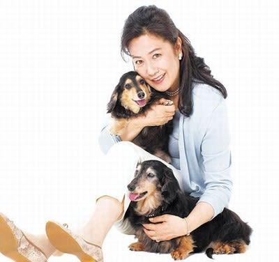 二匹の犬を抱きしめて座り込む名取裕子