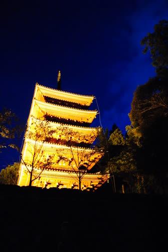 五台山 (中国)の画像 p1_21