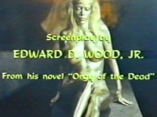 エド・ウッドの画像 p1_24
