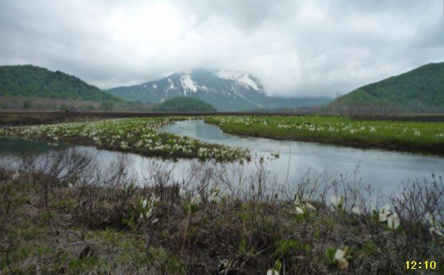 下大堀川と至仏山