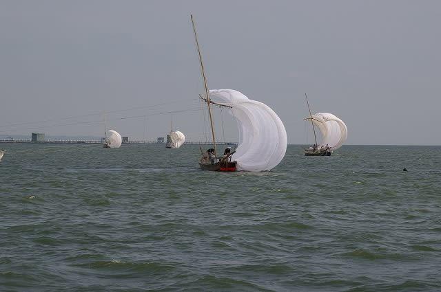 帆引き船(帆曳船,帆曳き船,帆引船) 合同操業 - 土浦の自然 ブログ ログイン ランダム ロボ