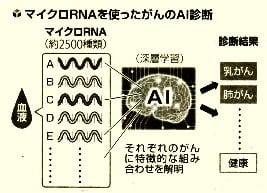 マイクロRNAを使ったがんのAI診断