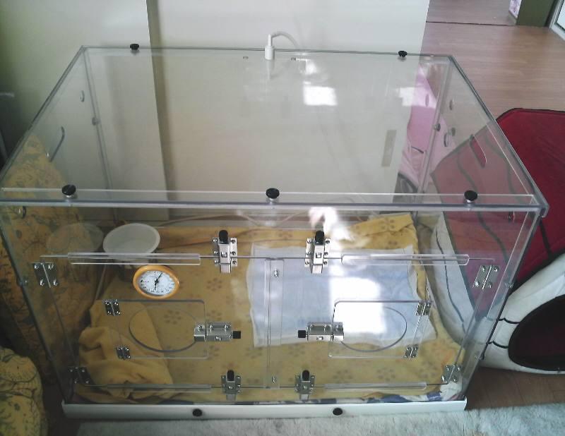 ペットのために家庭用酸素吸入器で酸素室を手作 …