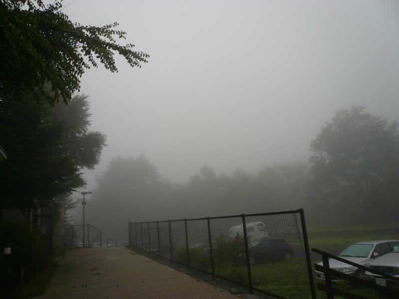 2008_7_28_011