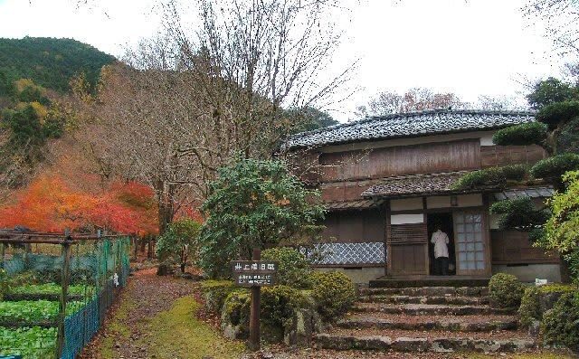 「昭和の森会館」の画像検索結果